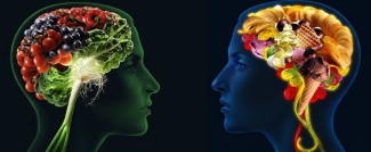 Brainfood - jedzenie dla umysłu