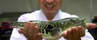 Ryby - smaczne i zdrowe, jednak wciąż niedoceniane