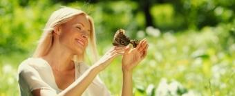 Motyli głos. Między ciszą a szeptem